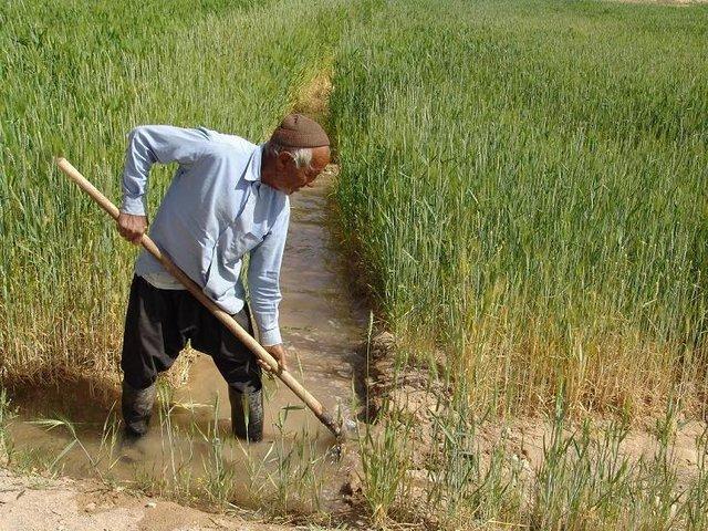 توصیه های 5 روزه هواشناسی کشاورزی