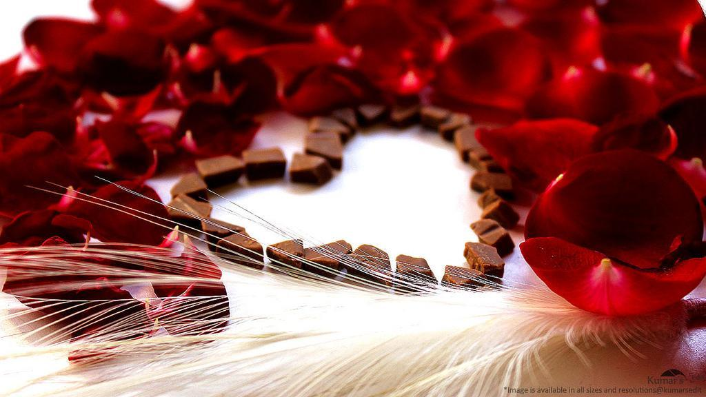 چگونه به عنوان یک مجرد در روز ولنتاین شاد باشیم؟