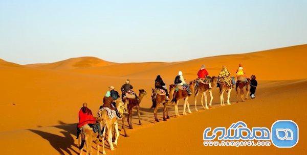دیدنی های کویر مصر، زیبایی منحصر بفرد و رویایی