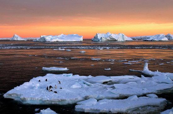 کشف جزیره ناشناخته در قطب جنوب